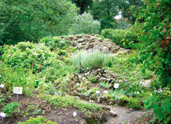 Der alte Botanische Garten