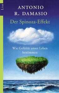 Der Spinoza-Effekt